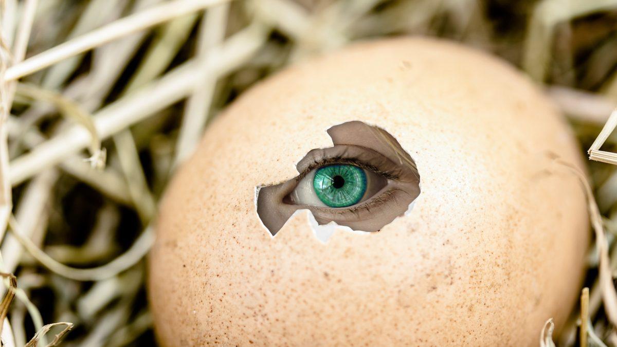huevo roto con un ojo humano dentro